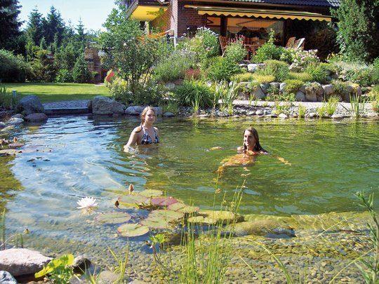 Schwimmteich Naturpools