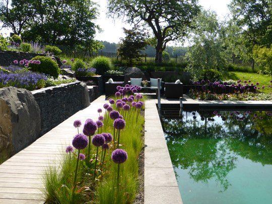 """Privater Schwimmteich am """"Tag der offenen Gartenpforte"""""""