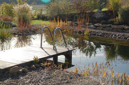 Was Schwimmteiche im Herbst brauchen