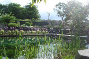 Foto: Teich & Garten