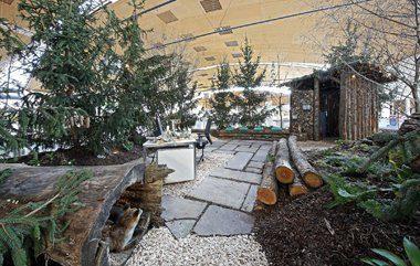 Showgarten des Jahres von Roland Mockler aus Weingarten. Foto: Messe Karlsruhe