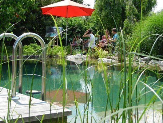 Naturpool Pool